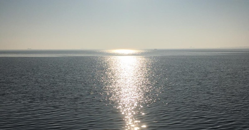 sun reflected on the water